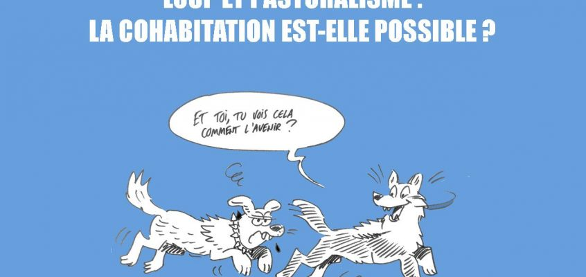 Projections : « Une Branche en Travers du Chemin »