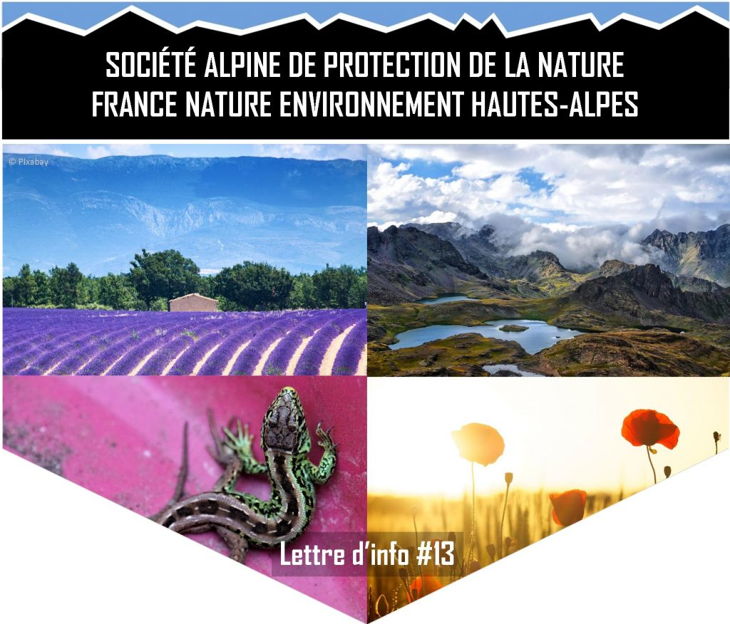 SAPN-FNE 05 - Lettre d'info 13