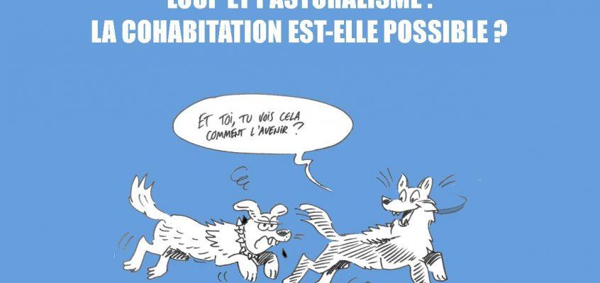 """Projections : """"Une Branche en Travers du Chemin"""""""