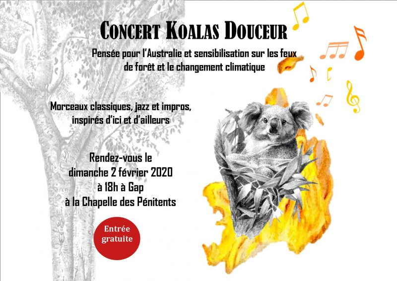 CONCERT POUR LES KOALAS !
